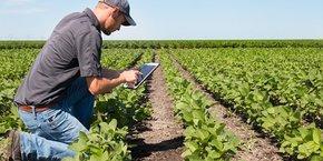 ITK édite des logiciels pour aider les agriculteurs à optimiser le rendement et la qualité de leurs cultures