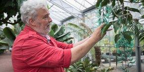 Jean-Gabriel Fouché est le directeur du conservatoire botanique Pierre Fabre à Soual, depuis son ouverture, il y a 21 ans.