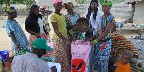 L'Association Femmes pour la Planète lutte contre la pauvreté des femmes africaines en favorisant la culture du karité