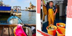 Les pêcheurs collectent et ramènent à quai les déchets plastiques pris dans leurs filets, qui seront ensuite traités dans la filière de recyclage mise en place par ReSeaclons.