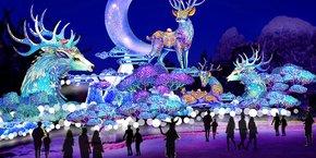 Pour sa quatrième édition, et première à Blagnac, le festival des lanternes aura pour thématique Vol au dessus du merveilleux.