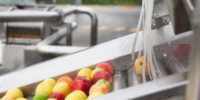 Avec des ambitions renouvelées sur plusieurs segments (desserts fruitiers, produits végétaux et marché américain), la jeune marque Charles & Alice aborde cette nouvelle étape avec confiance, même si elle devra aussi composer avec la hausse des matières premières, qui touche doublement le groupe sur le marché de l'emballage comme des fruits.