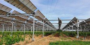 En 2018, le domaine de Nidolères, à Tresserre (66), et la société Sun Agri ont installé 4,5 hectares de structures agri-photovoltaïques dynamiques sous lesquelles ont été plantées des vignes.