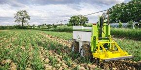 Naïo Technologies, membre du pôle Agri Sud-Ouest Innovation, développe depuis plusieurs années des robots pour entretenir les champs.
