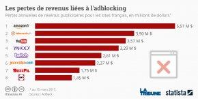 Les sites français sont particulièrement touchés par les adblockers. Pas étonnant : selon une étude de l'institut Ipsos réalisée en novembre dernier, 36% des internautes français utilisent un bloqueur de pub (+20% en moins d'un an), dont plus d'un jeune de 16-24 ans sur deux et 45% des 25-34 ans.