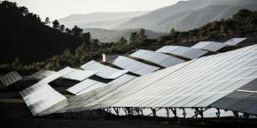 Les productions d'origine renouvelable représentent 17 % de la production totale de la région.