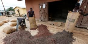 Le Ghana semble décider à maintenir les prix de ventes accordés aux cultivateurs locaux malgré la crise que traverse le secteur