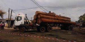 grumes billon cameroun transport Douala Cameroun