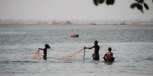 Sénégal Sine-Saloum