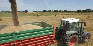 Agriculture, blé, tracteur, champ,  céréales, moisson,