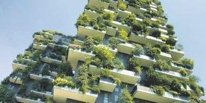 Immobilier, urbanisme