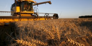 Des mesures pour l'agriculture seront annoncees le 3 septembre