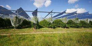 L'Agrivoltaïque, comment ça marche ?