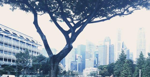 Singapour3