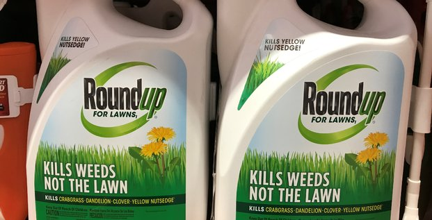Roundup: monsanto fait appel de sa condamnation aux usa