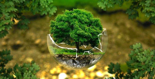 Transition écologique, climat, énergie, environnement