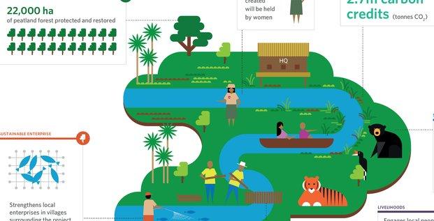 Finance verte biodiversité Sumatra Mirova