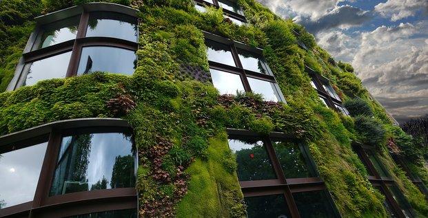 Mur végétal à Paris