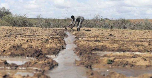 Agriculture terres irrigation labour