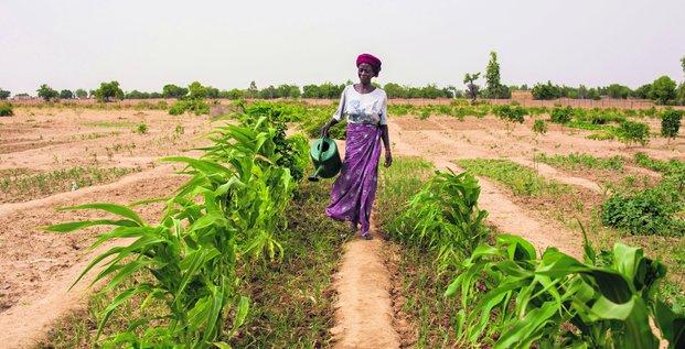 Les femmes dans la transition écologique