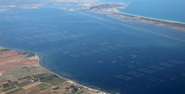 Vue aérienne d'un parc à huîtres, sur le bassin de Thau