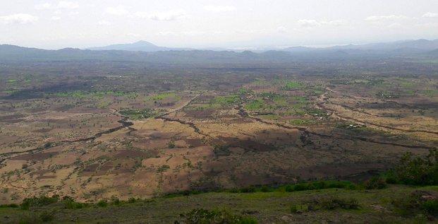 parc assela ethiopie