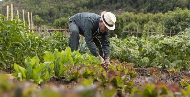 Agriculture urbaine alimentation Grenoble
