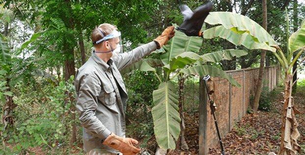 Julien Cappelle, écologue à Cirad à Montpellier