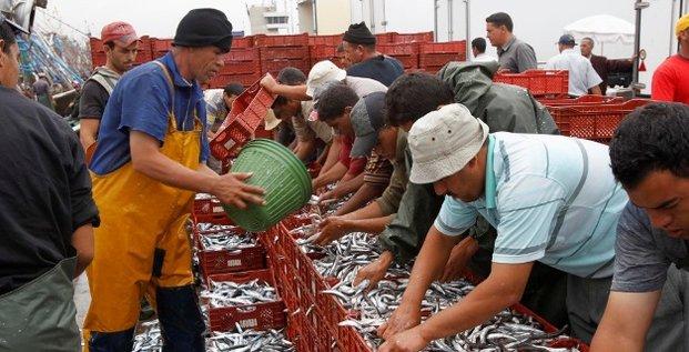 pêche poisson Maroc
