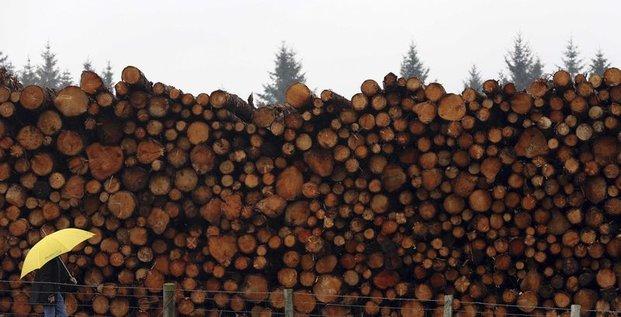 40% de la forêt européenne pour la biomasse en 2030