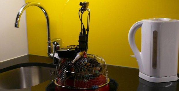 Robot Kultur bot