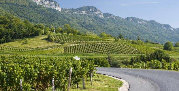 Vins de Savoie - Jongieux
