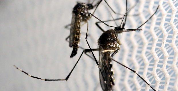 Premier cas de zika a hong-kong