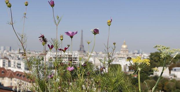 Paris, agriculture urbaine, ville, smart city, Bon Marché, fruits et légumes, écologie,
