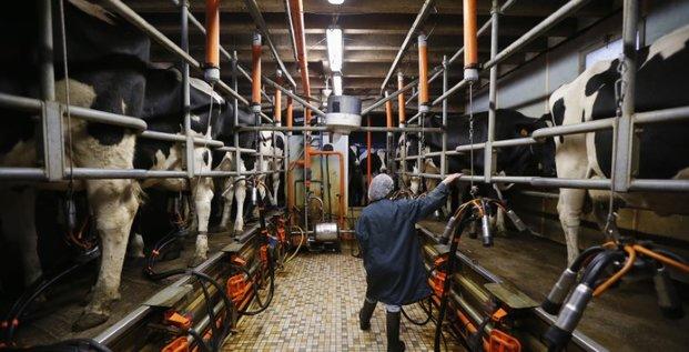 Le prix du beurre et la cotation du lait remontent sur les marches