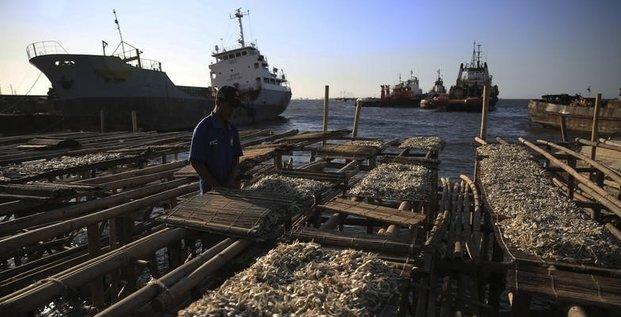 Les Etats ont cinq ans pour limiter la surpêche
