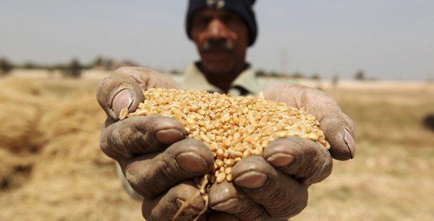 blé matières premières agriculture fermier agricole