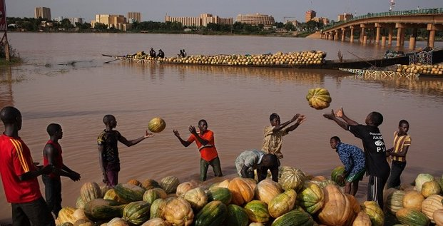 agriculture transport fleuve Niamey Niger