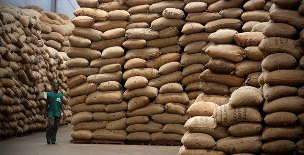 noix de cajou Côte d'Ivoire stockage