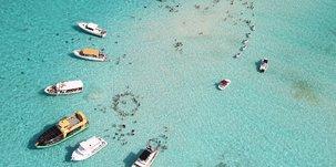 Stingray City (Îles Caïmans)