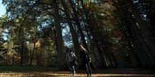 Un tiers des parcs naturels menaces par l'activite humaine
