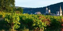 Les vignobles des Costières de Nîmes
