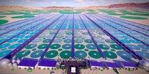 projet de ferme industrielle de production de micro-algues en Arabie Saoudite