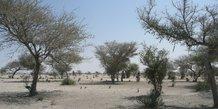 Sahara Sahel climat sécheresse