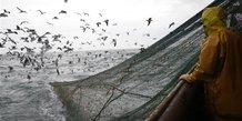Le Parlement européen contre l'interdiction de la pêche profonde