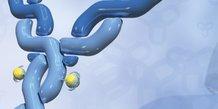 Anticorps ADN biotech