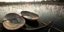 Vietnam paysage