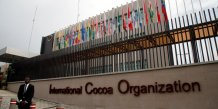 ICCO Abidjan