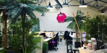 Dorcel Lab, SexTechLab, bureaux, startup, incubateur,