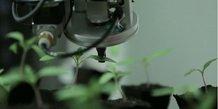 Alci développe notamment des systèmes de contrôle pour la filière semences